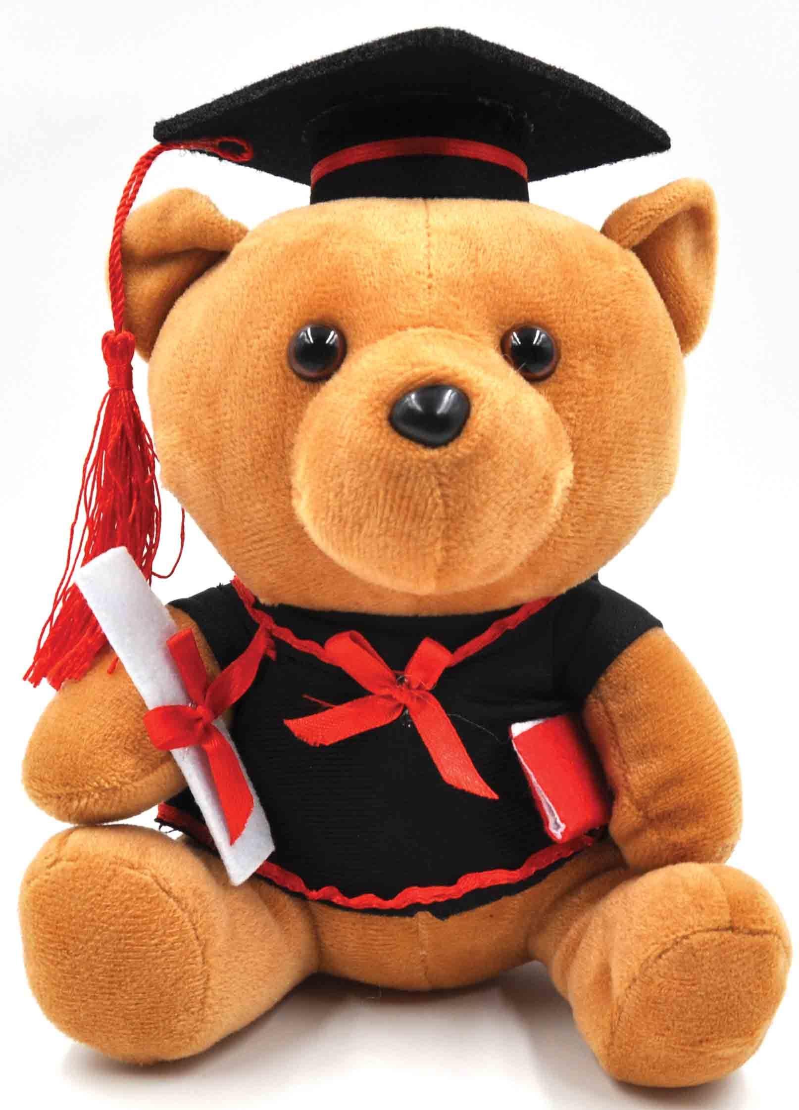 grad bear.jpg