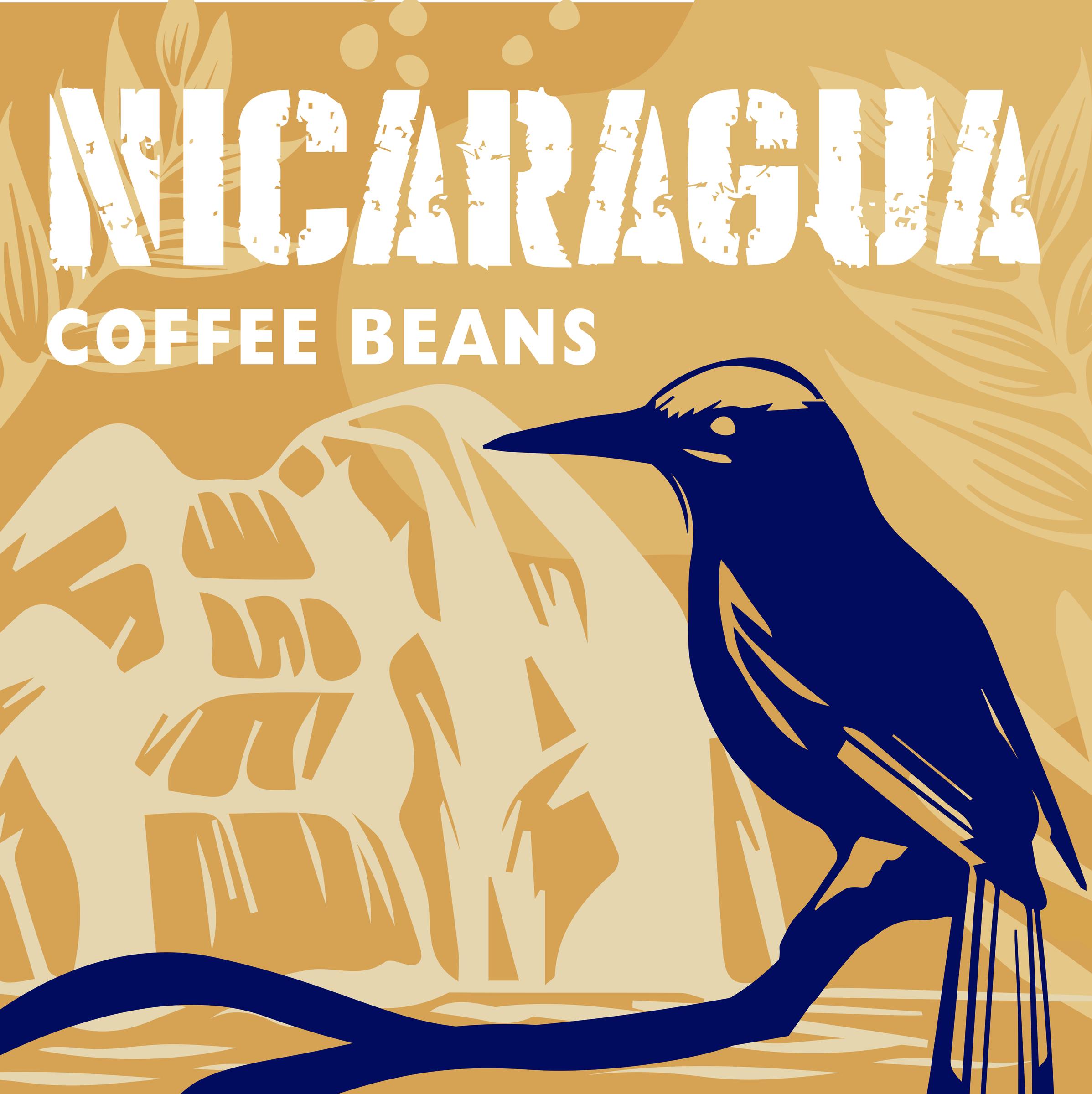 尼加拉瓜-中焙.jpg