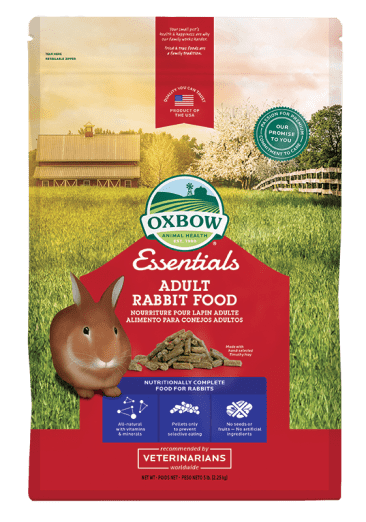 essentials-rabbit-front_366_522_s.png