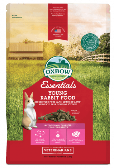 NEW_Essentials_Young_Rabbit_366_539_s.png