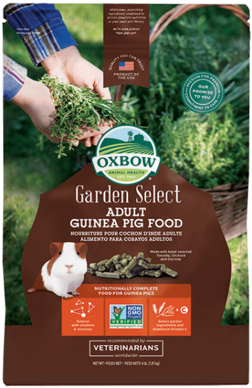 NEW_Garden_Select_Adult_Guinea_Pig_366_563_s.png