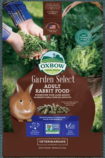 garden-adult-rabbit_366_550_s.png