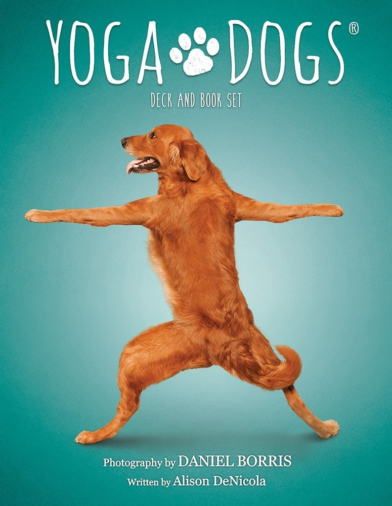 狗狗瑜伽卡(書卡套組):Yoga Dogs Deck & Book Set.jpg