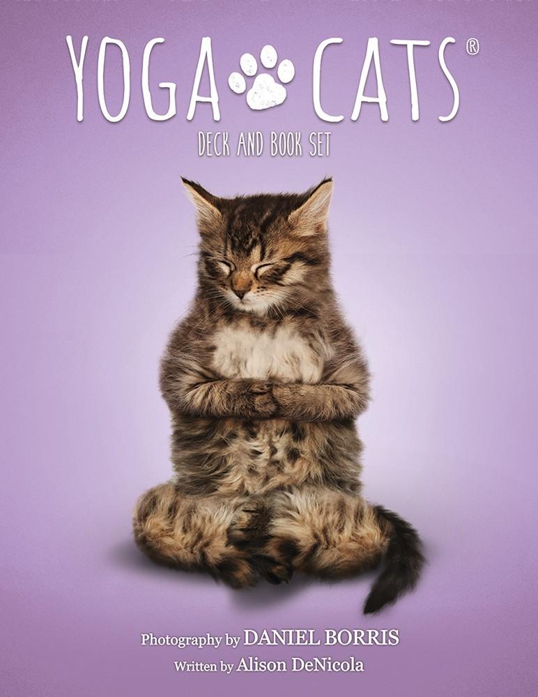 貓咪瑜伽卡(書卡套組):Yoga Cats Deck & Book Set.jpg