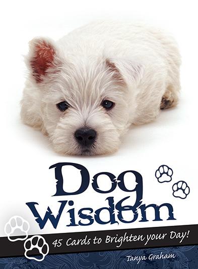 狗狗智慧卡:Dog Wisdom.jpg