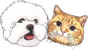 PPB Dog&Cat.png