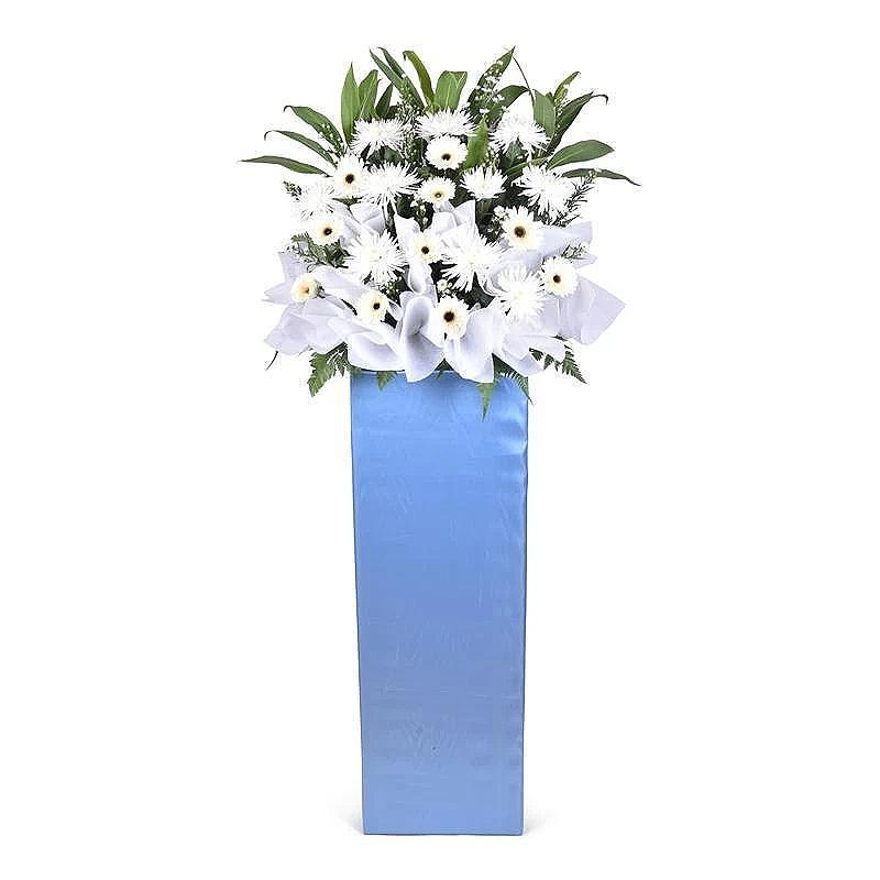cool-blue-6807548002417_1200x_mh1590646135040.jpg