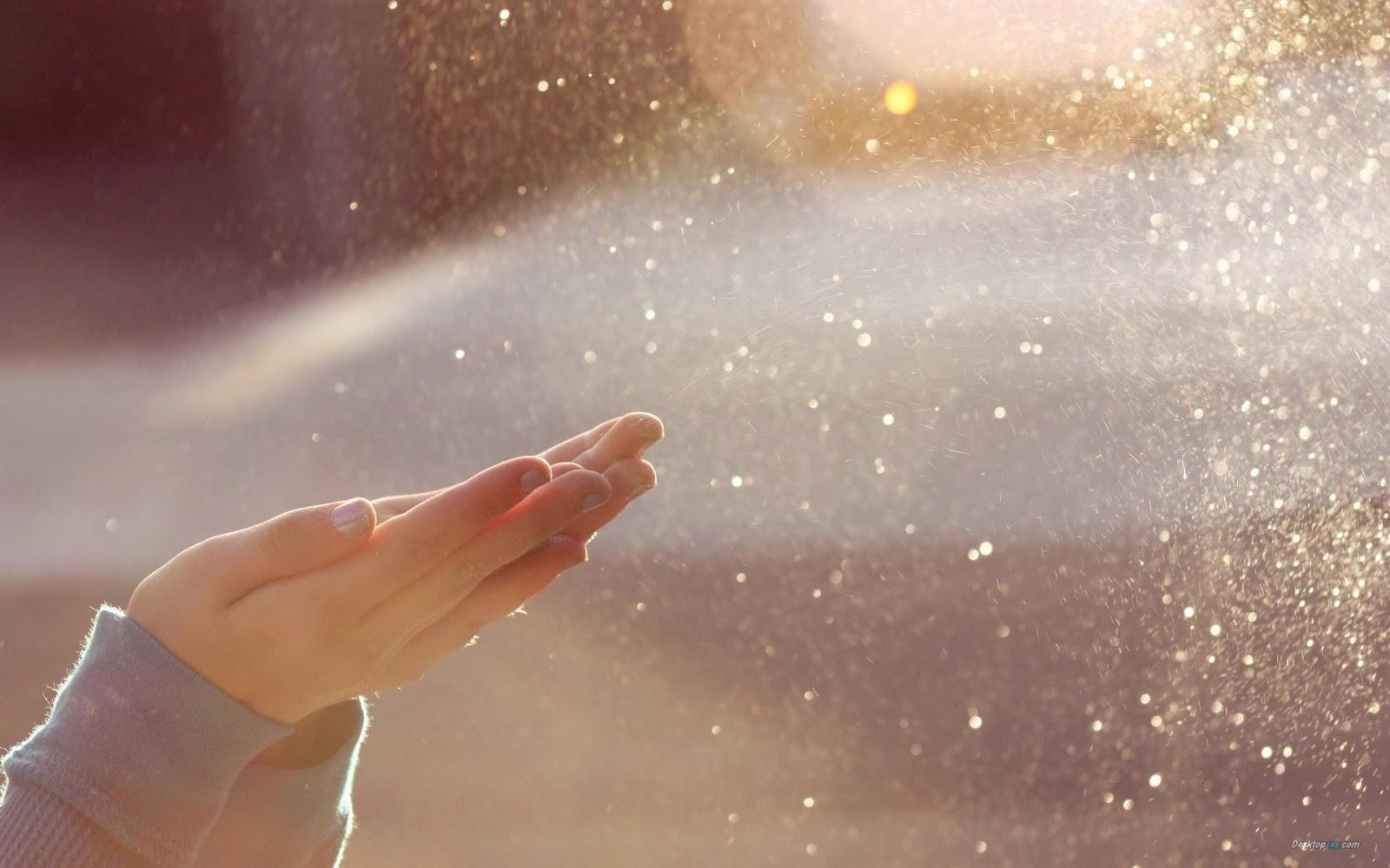 善興緣生命禮儀 | 社會福利輔導