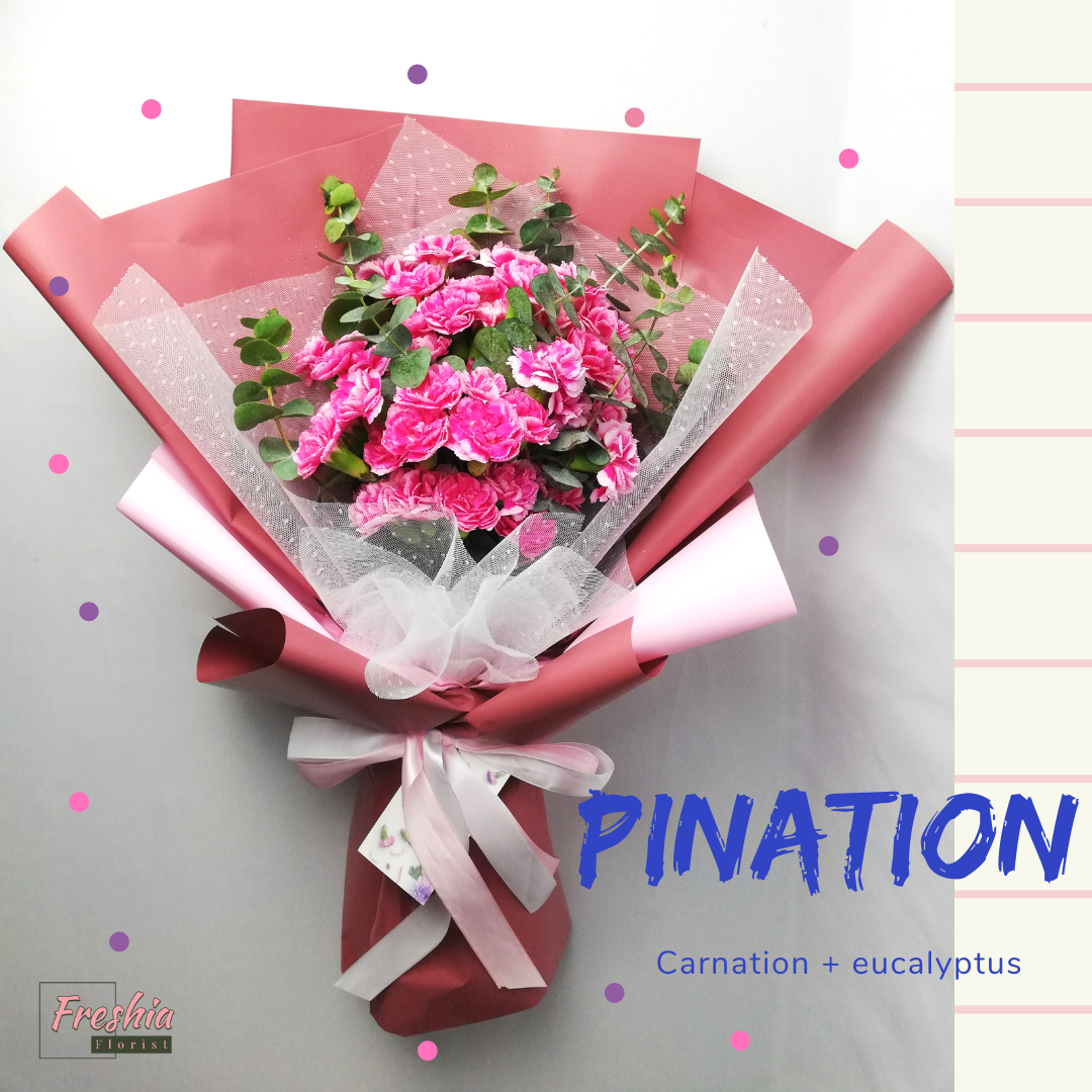 Pination new.png
