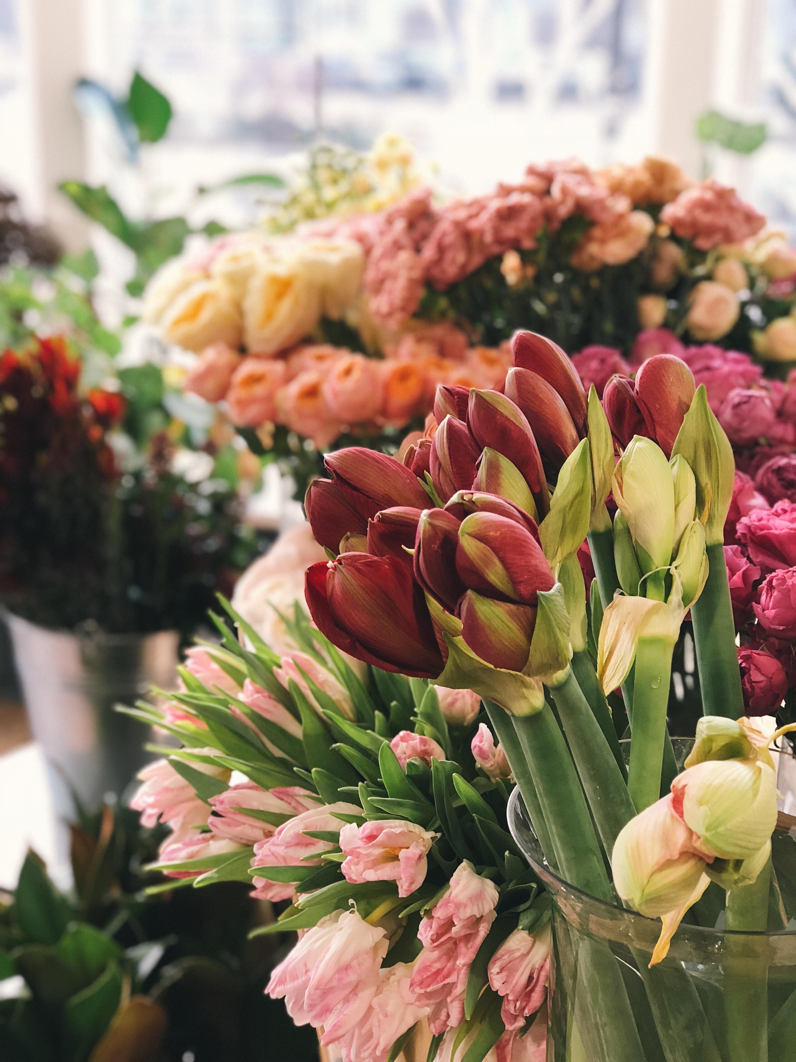 ROSES CARNATION TULIPS FLOWER BOUQUET.jpg