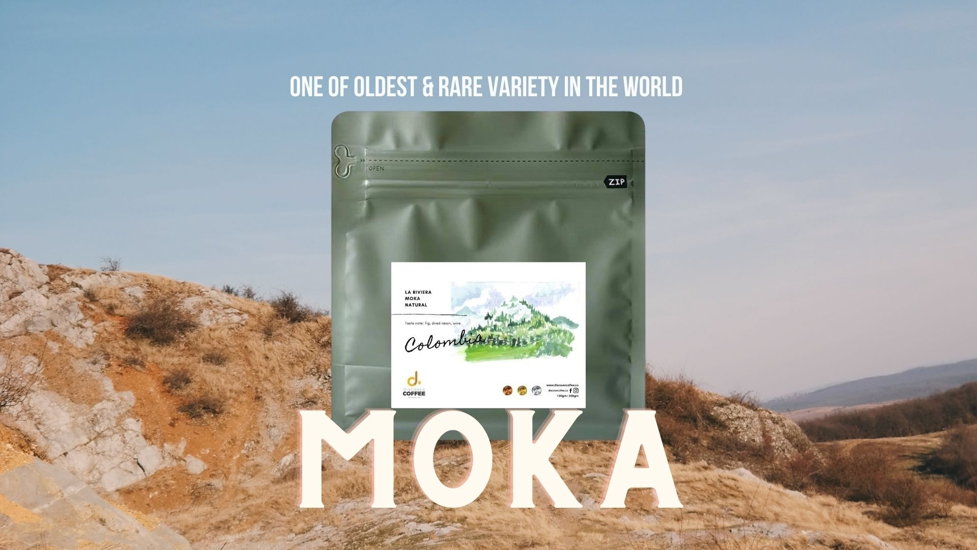 Discover Coffee Roasting Co. |