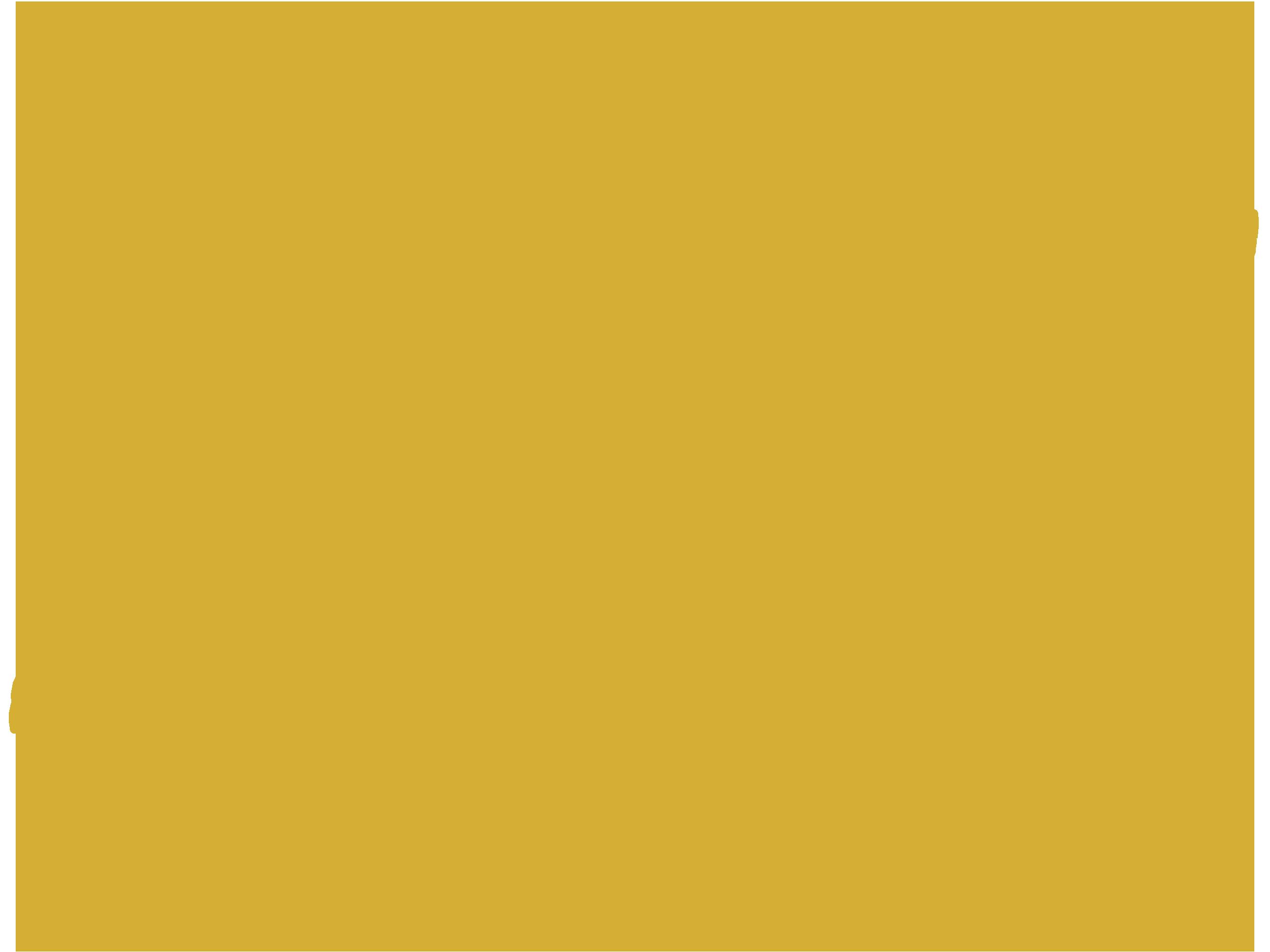 Meöw Intimates