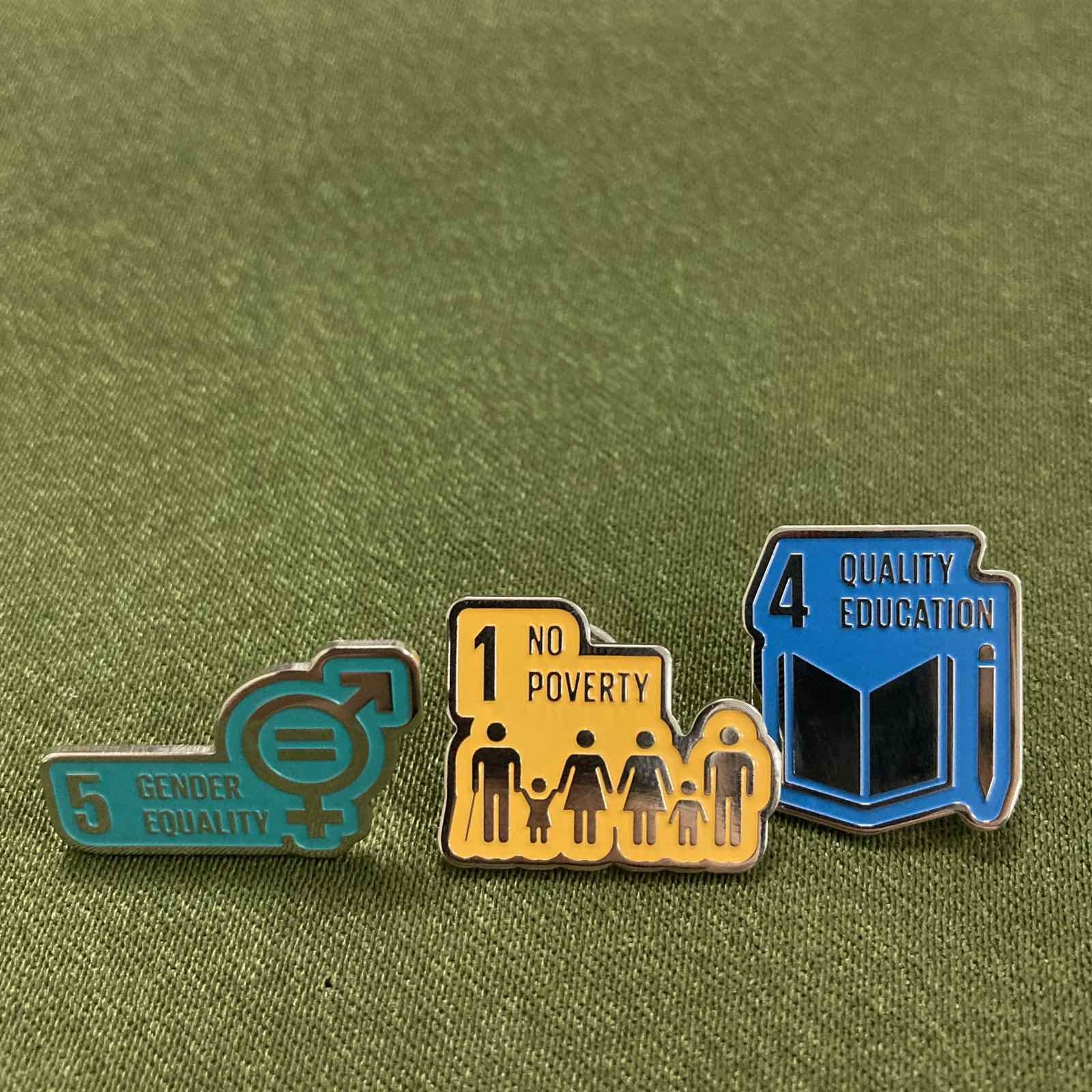 SDG pins.jpg
