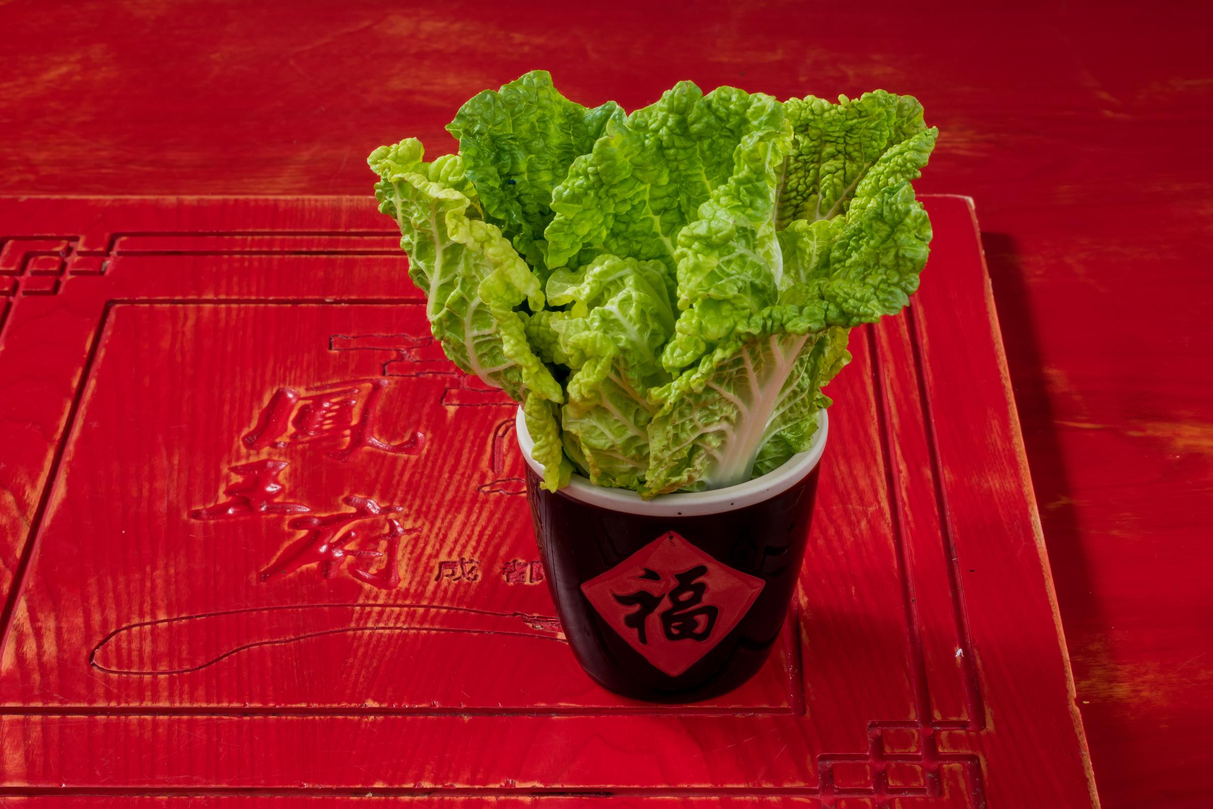 Romaine lettuce.jpg