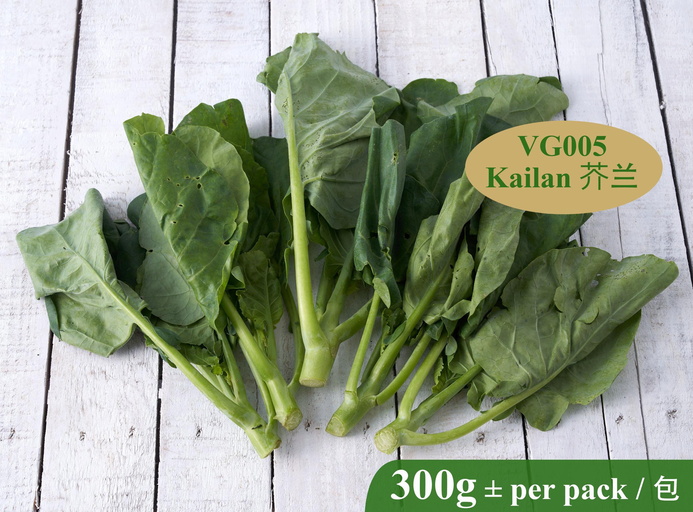VG005 Kailan-RM5.50 per 300g+.jpg