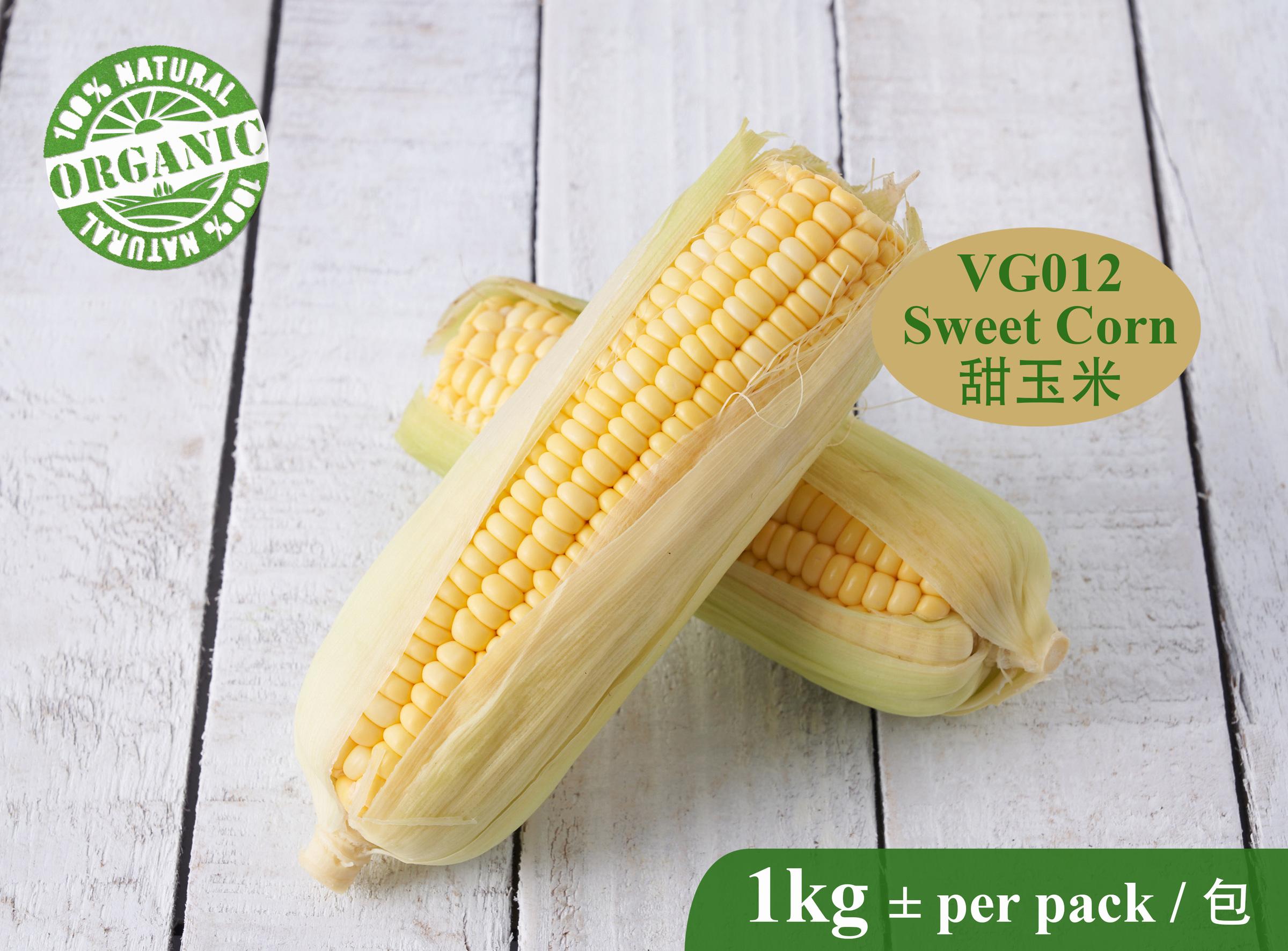 VG012 Sweet Corn-RM15.00 per kg.jpg