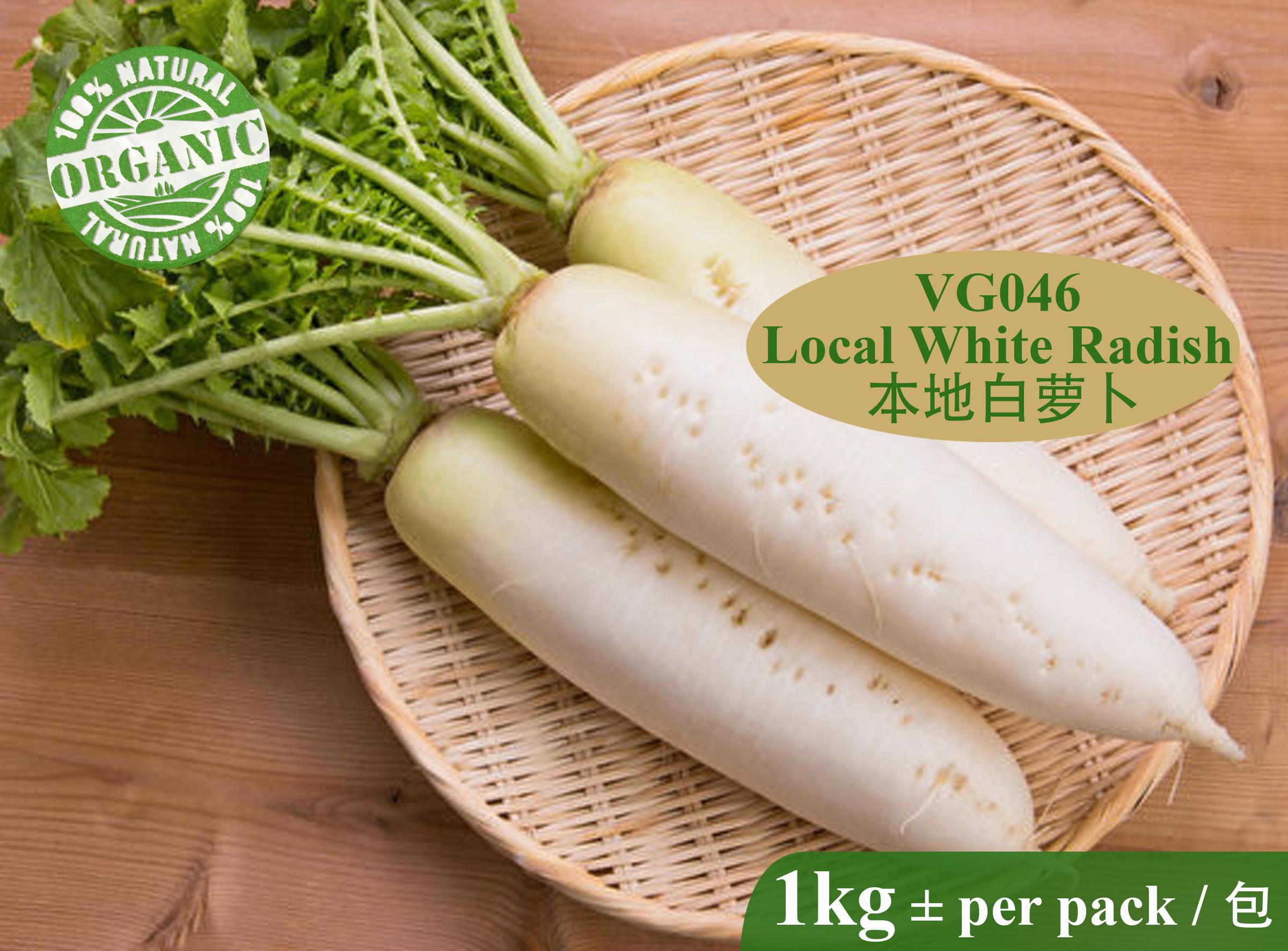 VG046 Local White Radish-RM10.00 per kg+.jpg