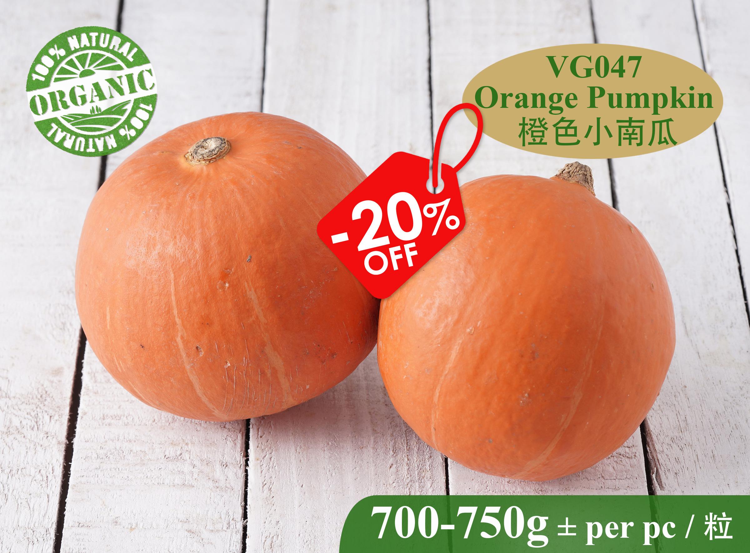 VG047 Orange Pumpkin-RM20.00 per kg+.jpg