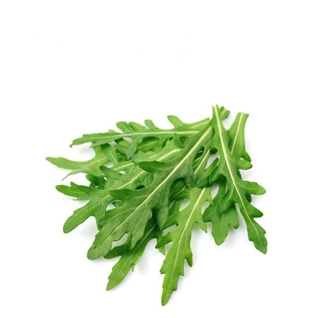 Arugula-Rocket-Plant-Mideterranean-Fresh-Salad.jpg_640x640