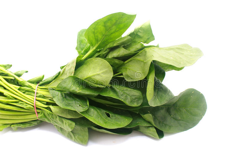 chinese-spinach-23719285