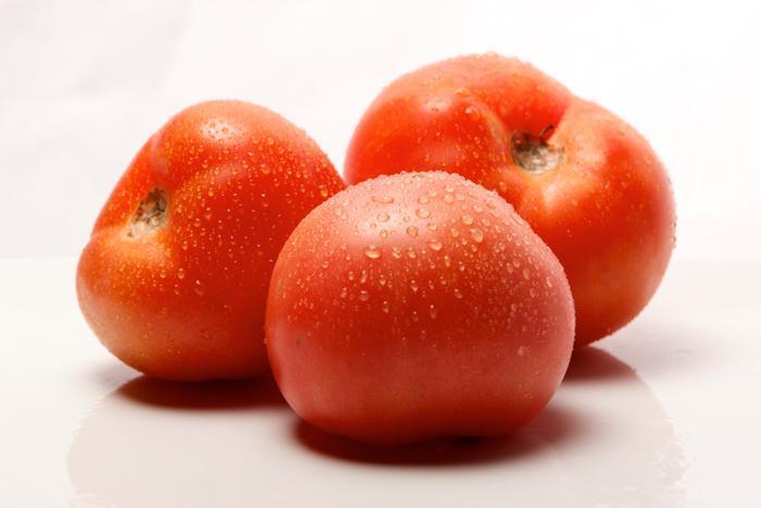 tomato-field_7bab9e7a-b003-485e-a7b2-99b6bbc60ed8