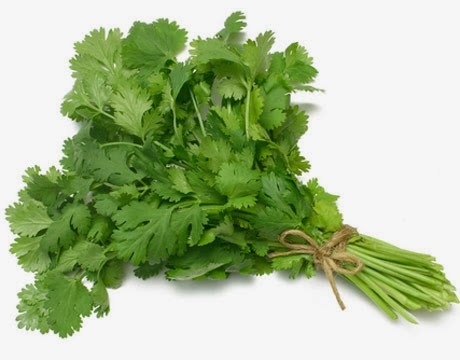 coriander-benefits2