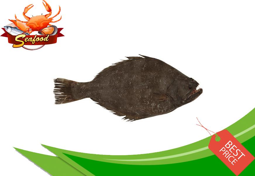 Ikan Sebelah.jpg