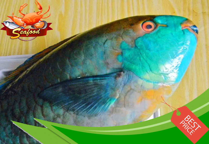 Ikan Bayam.jpg