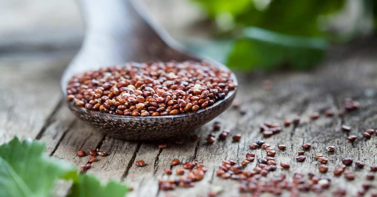 red-quinoa-1200x628-facebook-1200x628