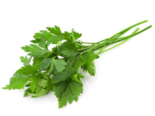 parsley italian.jpg