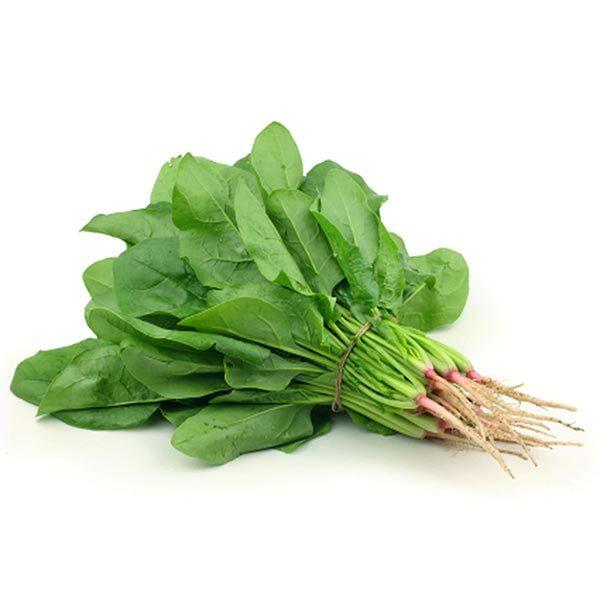 plagafarm-english-spinach-1.jpg