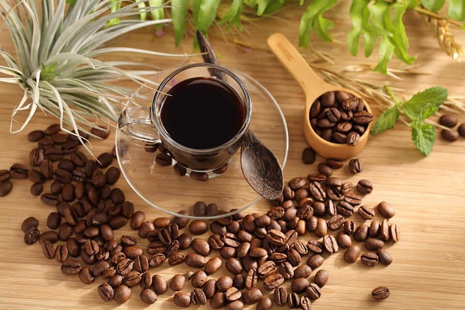 美妙山咖啡 My Café | 美妙山咖啡 My Café - 咖啡豆系列