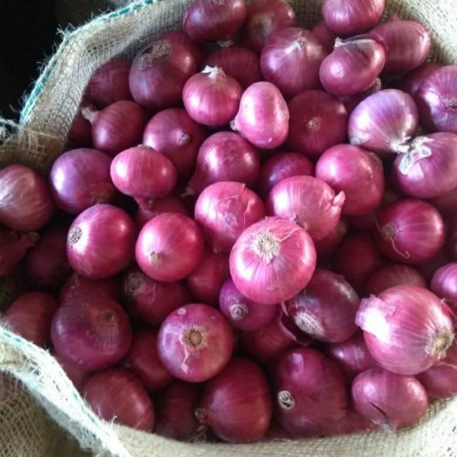 bawang-merah-india