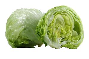 Iceberg Lettuce.png