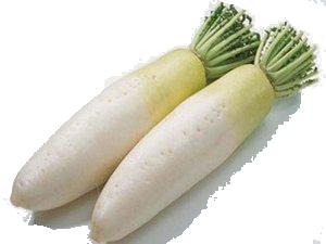 Lobak Putih.png