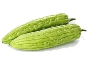 Peria Besar  Bitter Gourd.png