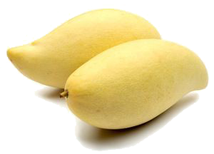 Local Gold Lily mango.png