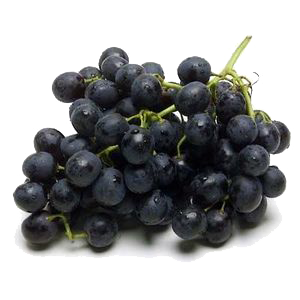 Black grape South Africa.png