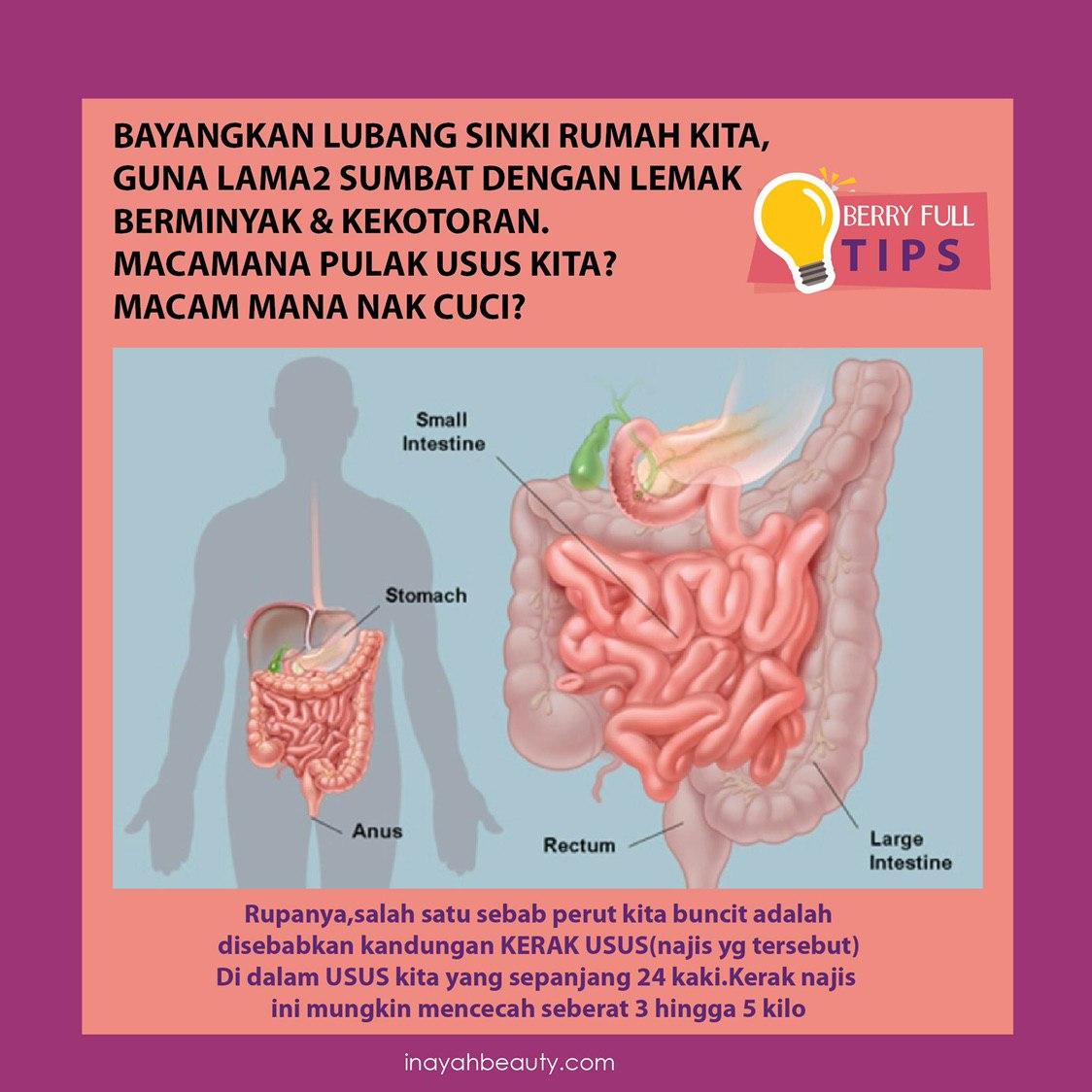 berryfull inayah kervenglow tips usus clean up bersih.jpg