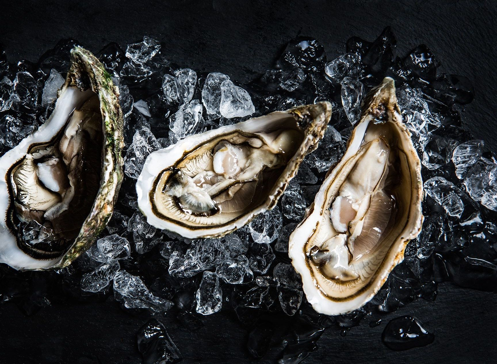 Seafood Queens | 海鲜皇后宝贝 OUR PRODUCTS - 贝壳类 SHELLFISH / CLAMS (COMING SOON)