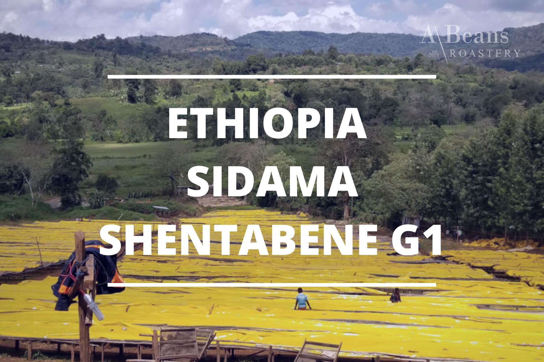 Ethiopia Shentabene.png