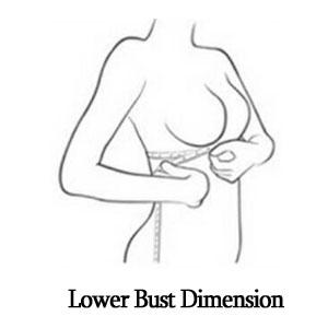lower bust.jpg