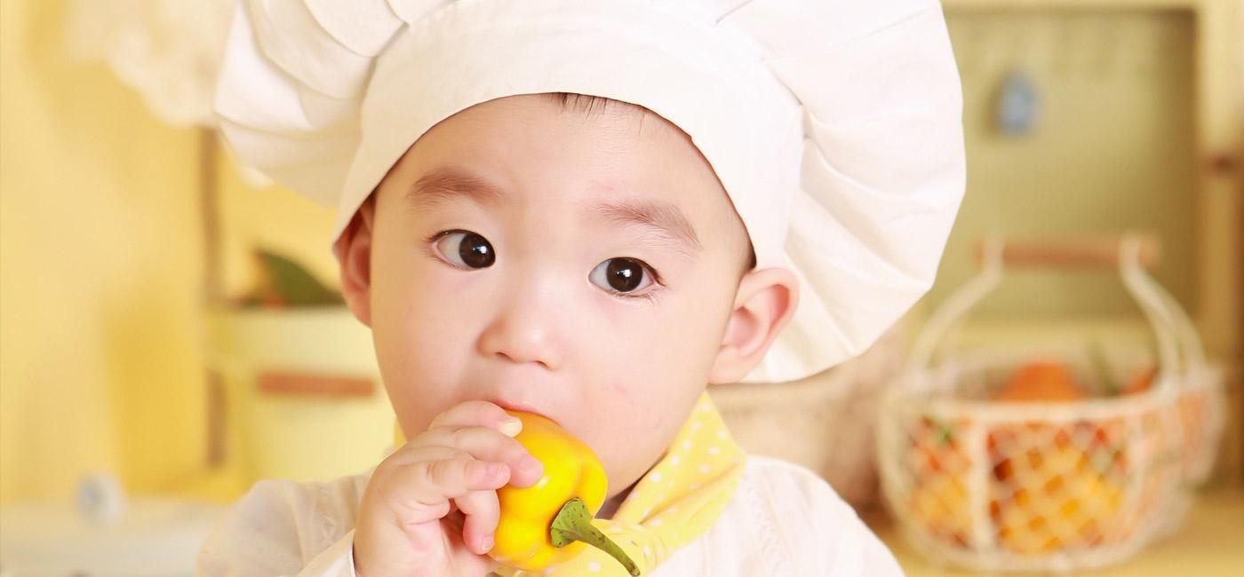 Healthyosh |  - BABY FOODS