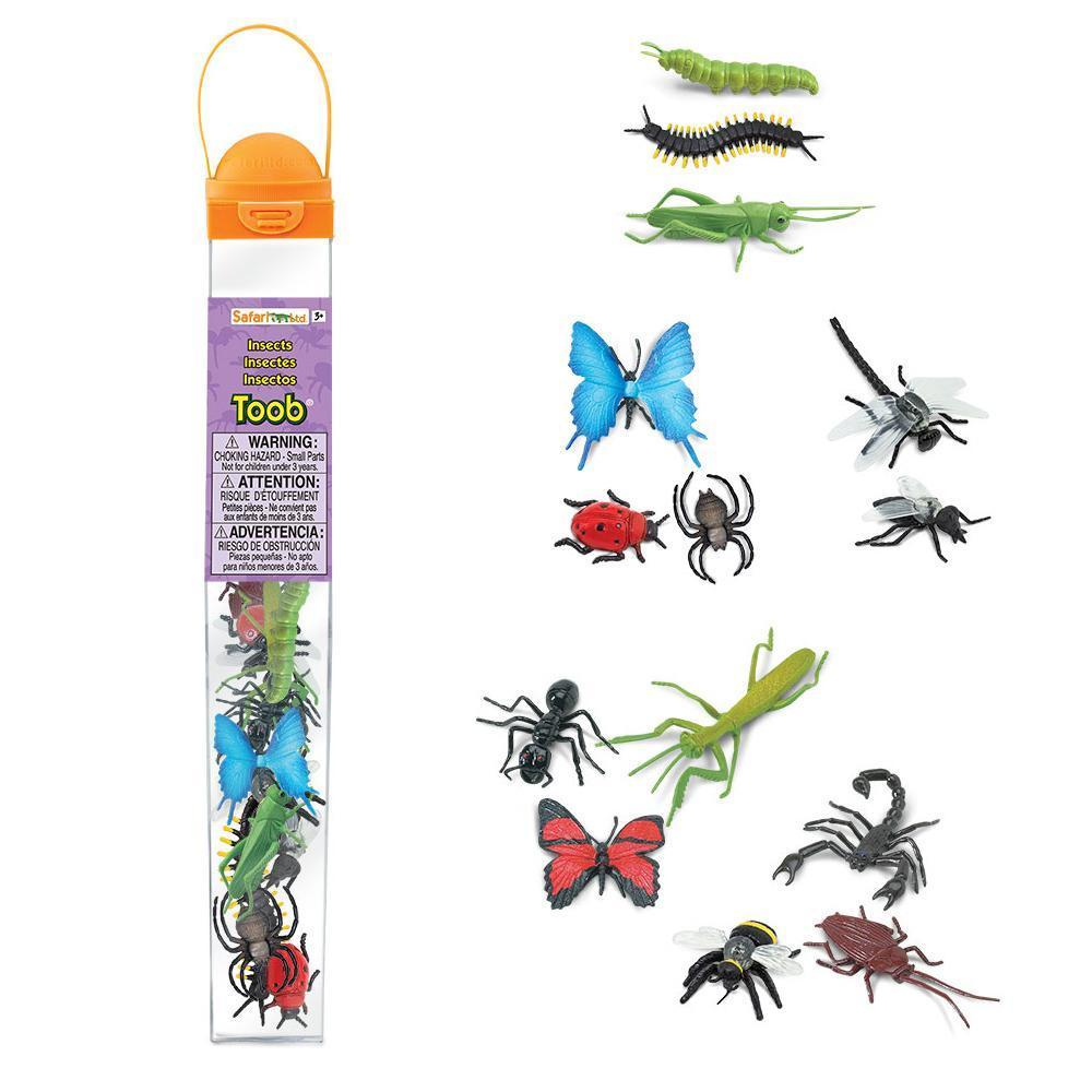 Insects 1.JPG