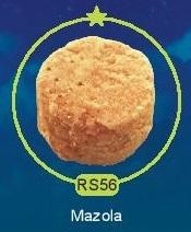 RS56.jpg
