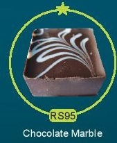 RS95.jpg