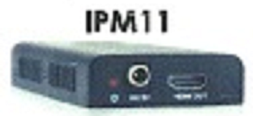 IPM 11.png