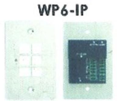 WP6-IP.png
