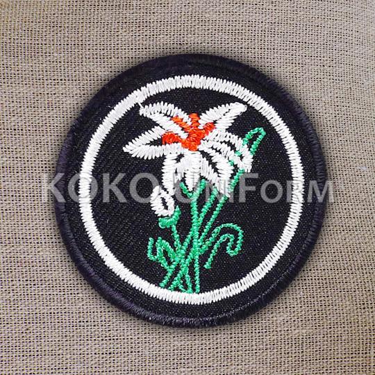 Pandu Puteri Badge 6.jpg
