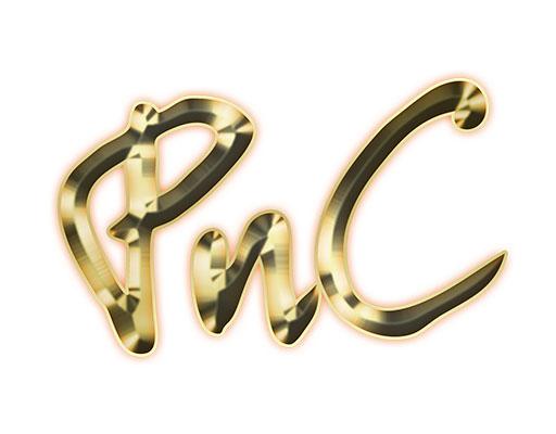 P.N.C Singapore Traders Pte Ltd